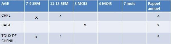 calendrier-vaccination-du-chien .jpg
